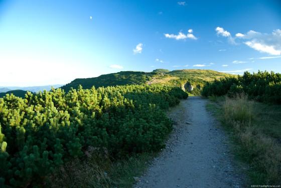 mountain-track